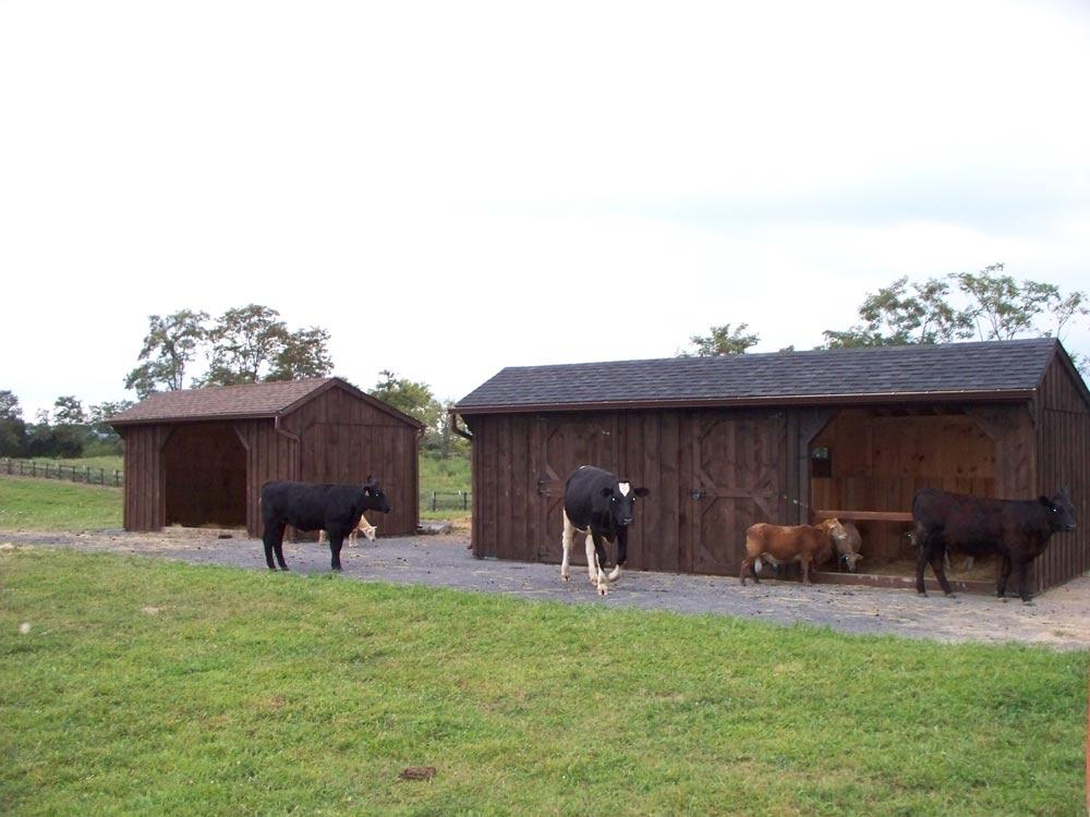 amish built barn