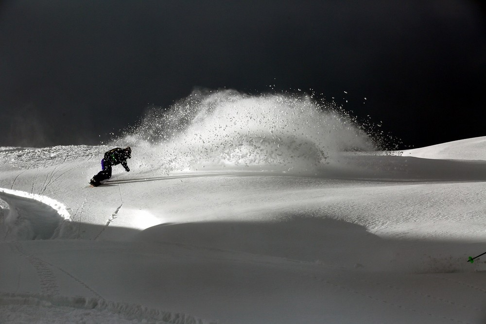 Leanne milking the March Pow. Photo: Kent Vertrees
