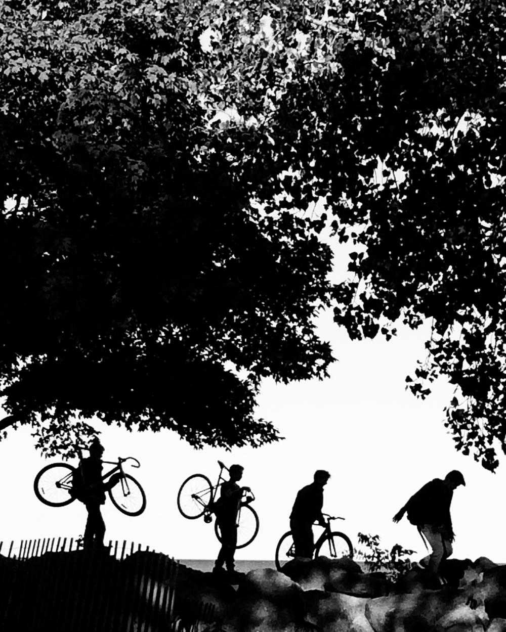 bikesROW.jpg
