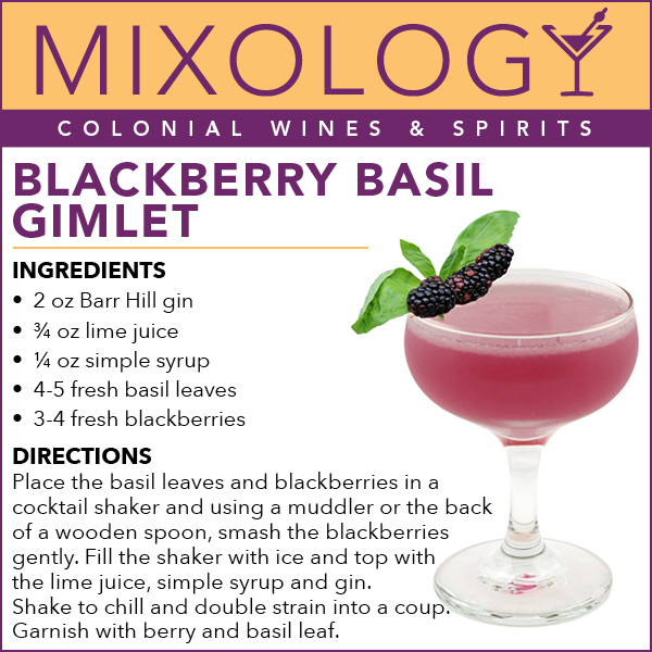 BlackberryGimlet-Mixology-web.jpg