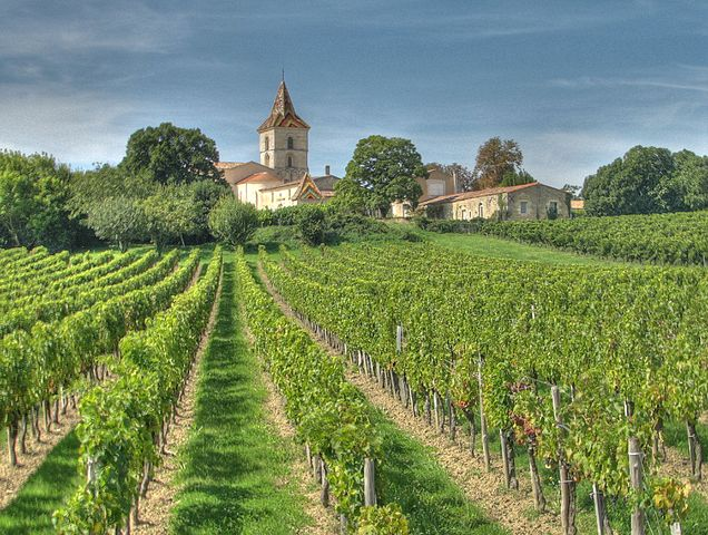 Vineyards of the Bordeaux wine region of Blaye • Image by  michael clarke stuff    -  Cars, Blaye 02 HDR