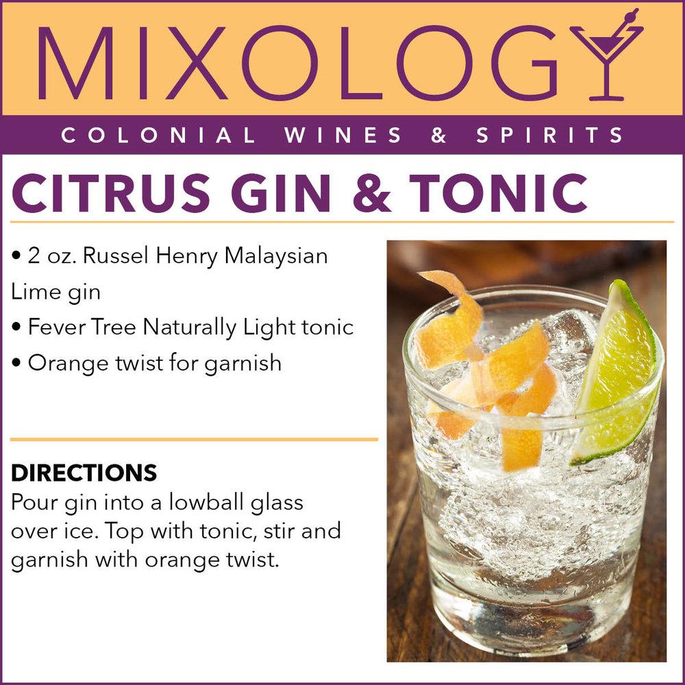 CitrusGinTonic-Mixology-WEB-June18.jpg
