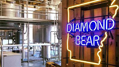 Image:  Diamond Bear