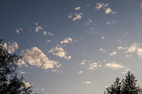Cumulus fractus