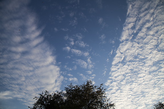 Altocumulus forming in bands. The different cloud shapes are caused by differences in the air motions forming each band. Photo by Craig Johnson at Cedar Falls, Iowa.