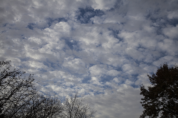 Altocumulus floccus Photo by Craig Johnson