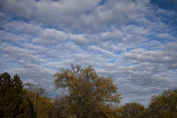 Altocumulus over Cedar Falls on May 13, 2019.