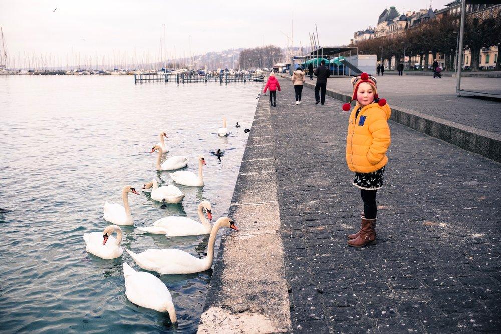 Geneva, Switzerland  December 2016