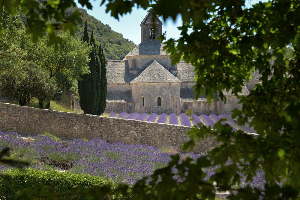 L'abbaye Notre Dame de Sénanque