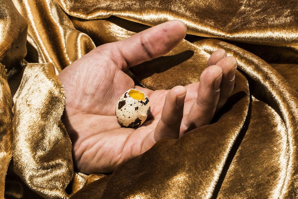 Gold Eggs 2.jpg
