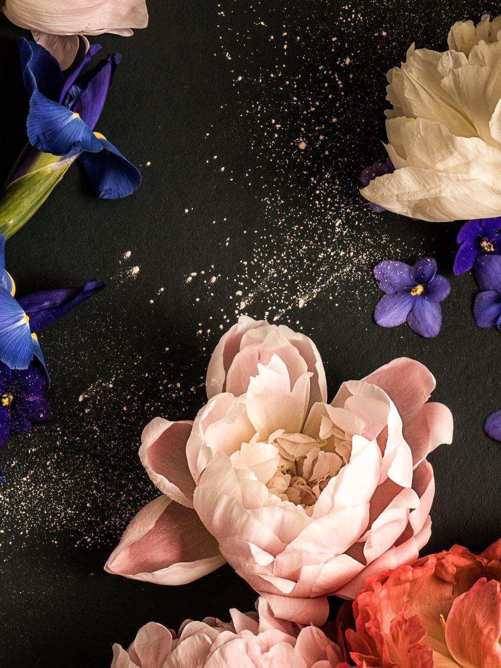 Prose.Fragrance-234.jpg