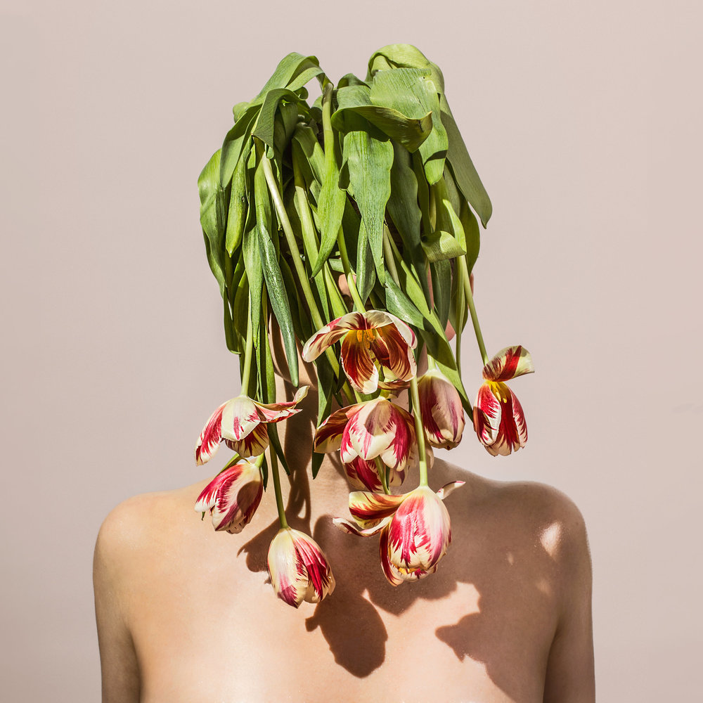 Flower.Head_U6A7593.2.jpg