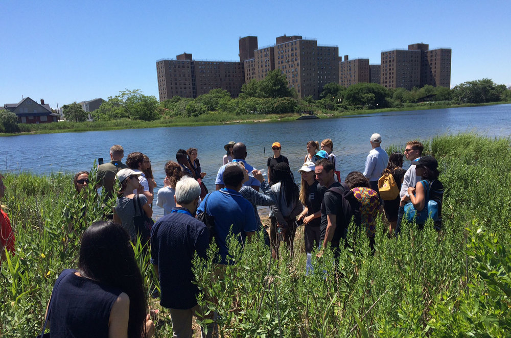 Adam Parris and team at the Science and Resilience Institute at Jamaica Bay leading a site visit to ecological census and restoration locations in Bayswater Park, New York. Photo by Matt Chadsey.