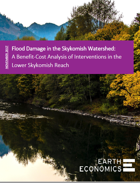 Cover_Flood Damage in the Skykomish.PNG
