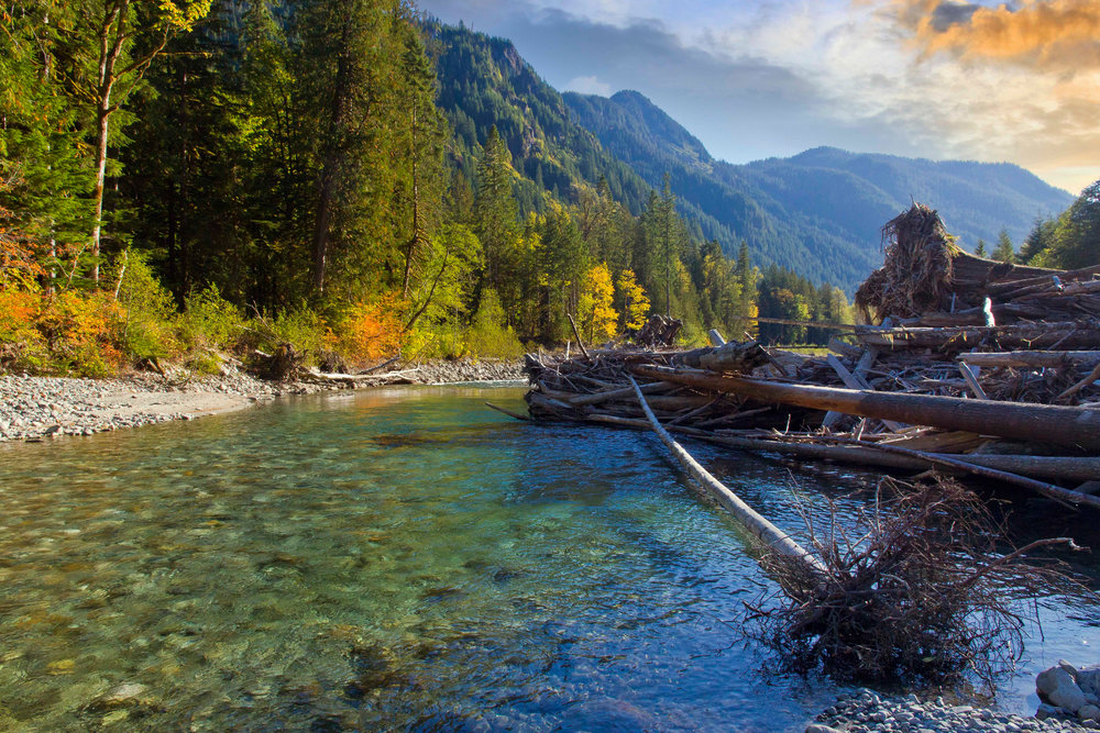 WA_MountBaker-Snowualmie_NF_AndyPorter_R_121006_01.jpg