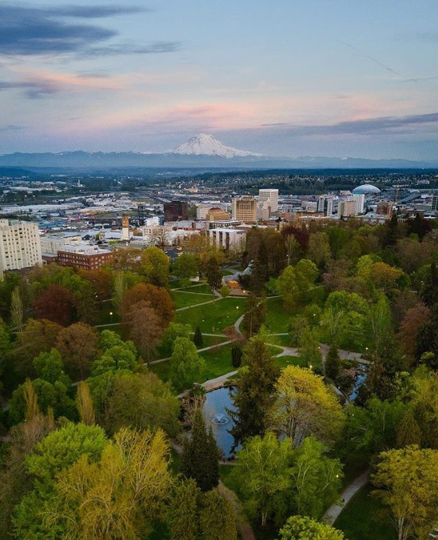 View of Tacoma over Wright Park  Photo Credit: Just2Guys Creative