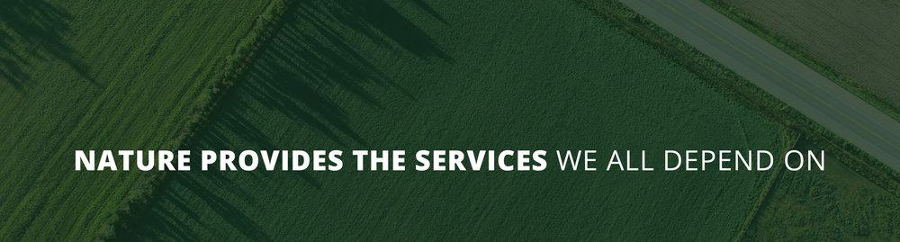 EE_NatureProvidesServices_Banner_2019.jpg