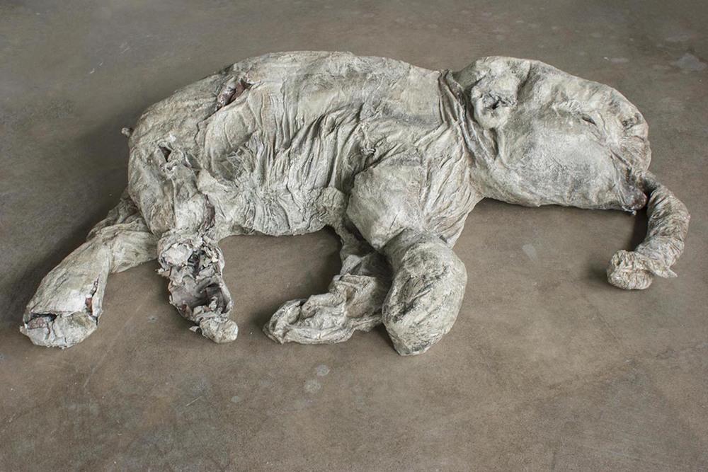 Lyuba (baby wholly mammoth)