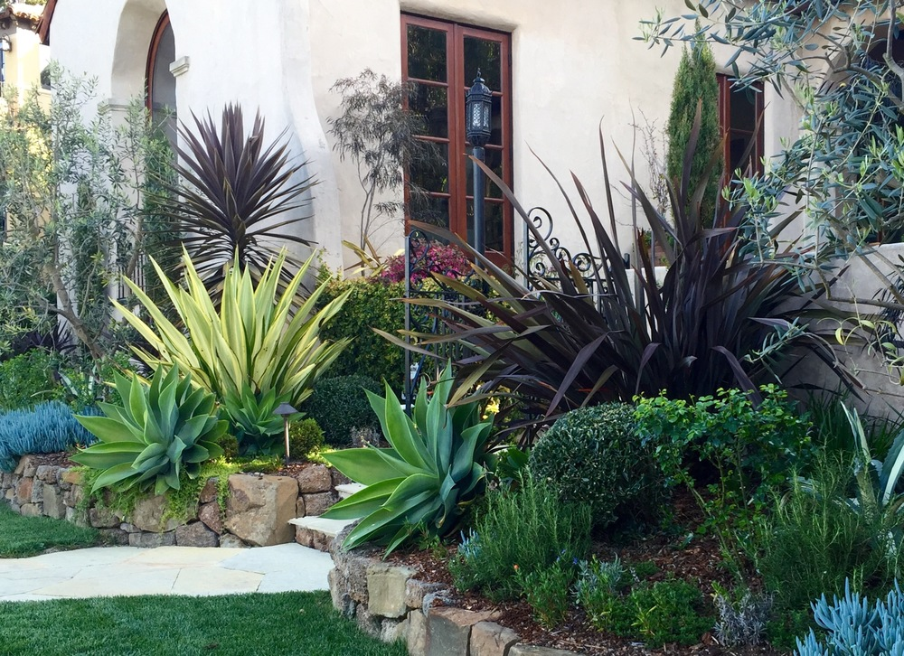 Blog Zacate Landscape Design