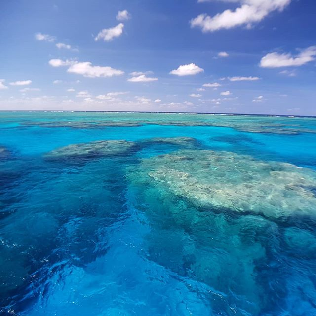 This is the stunning Holmes Reef in the Coral Sea 120nm east of Cairns, Australia. 100m visibility in the middle of the Deep Blue. Shot by @freerangesailing with the #Snaplens Wide Angle Poariser Pro lens.  #deepblue #exploreqld #tnq #fnq #seeaustralia #exploreaustralia #greatbarrierreef #coralsea #boatlife