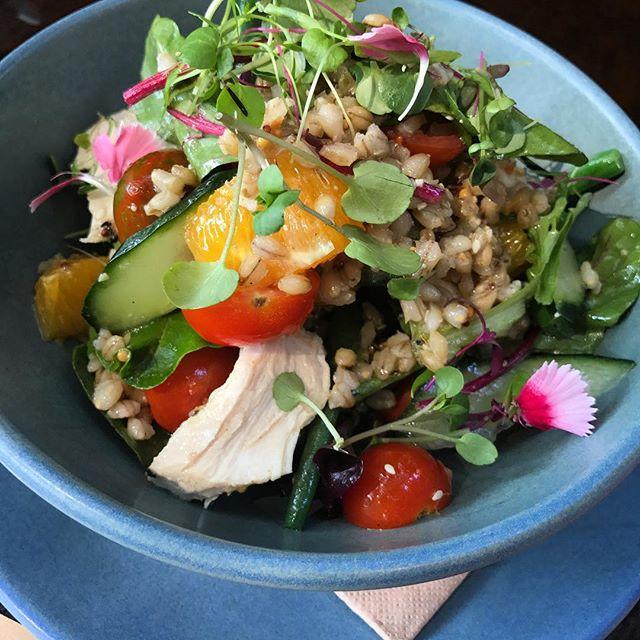 New chicken + quinoa salad 🥗 #pukyeah