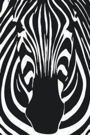 Zebra Products.jpg