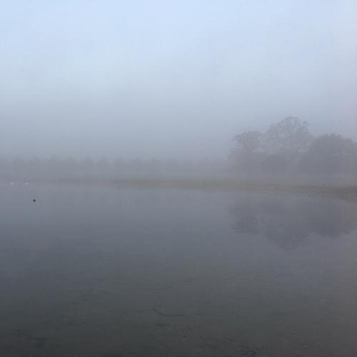 mist.jpeg