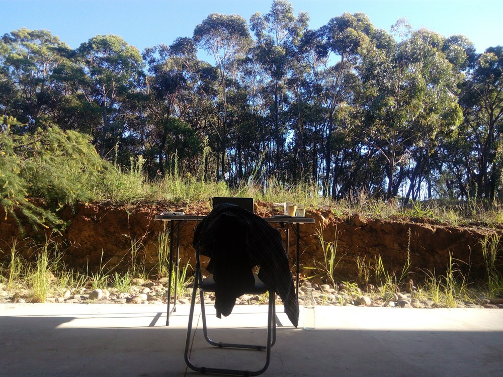 my view in the late morning here at my artist residency in Australia, on the edge of a wilderness