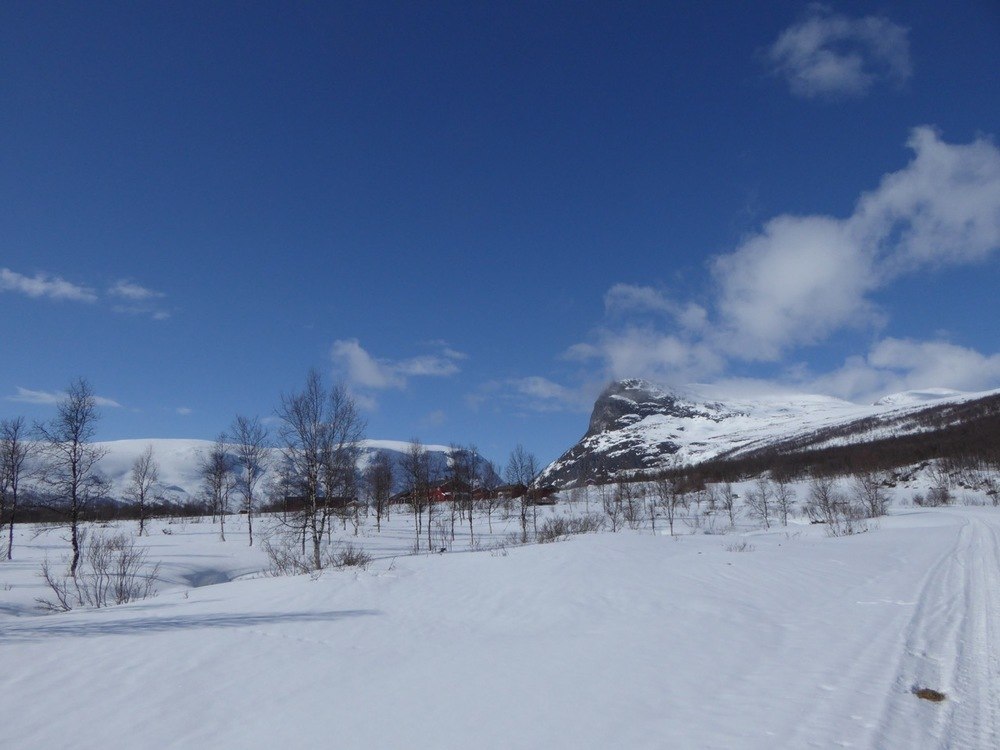 Vi må tilbake til Sikkilsdalsseter til sommeren for å se på hestene og gå på toppene