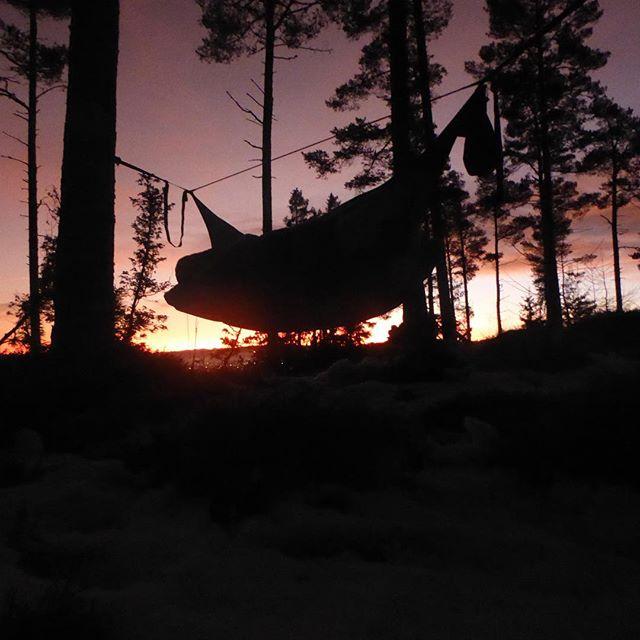 God morgen fra skogen! #amokequipment #liveterbestute #ekspedisjon_utetid #planleggingsdag
