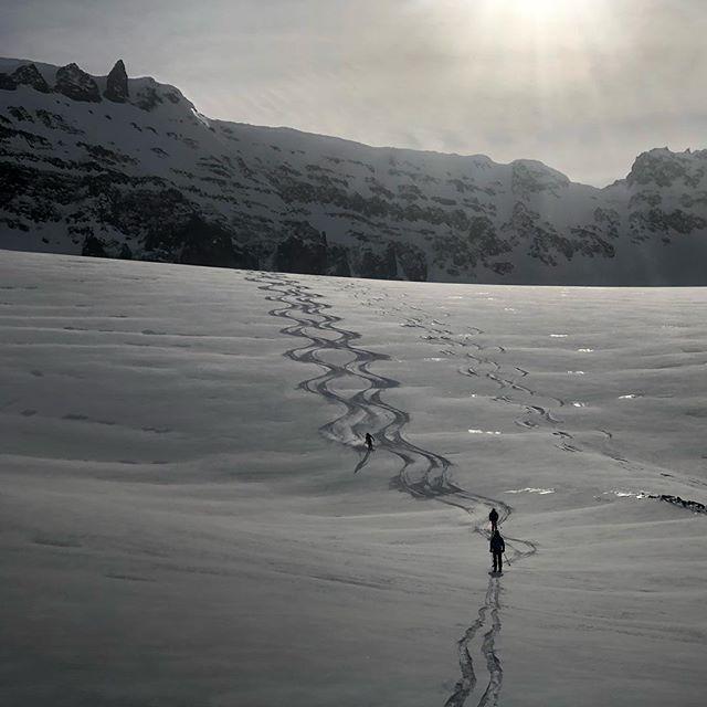 It was a good day! #iceland #skitouring #skiing #mountainguides #heliskiing #heliski #heliskiiceland #beachlanding #lovethisview #volkl #heliaustria #wheniniceland