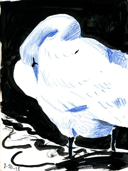 08-20-15-swan.jpg