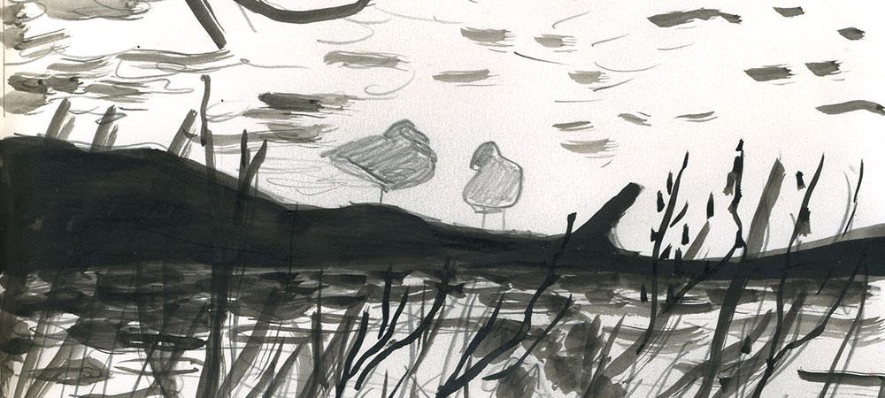 05-04-14-ducks-cropped.jpg