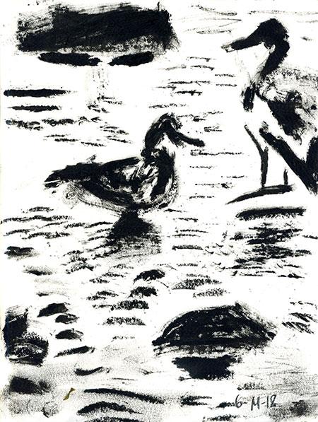 06-14-18-ducks.jpg