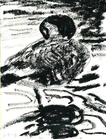 06-21-18-goose.jpg