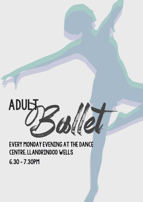 Adult ballet for all abilities.