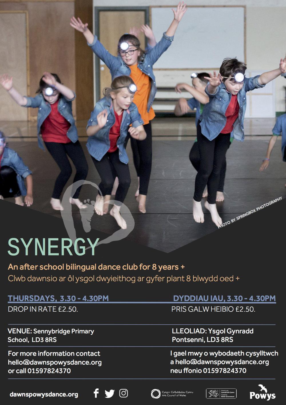 Synergy 2017.jpg