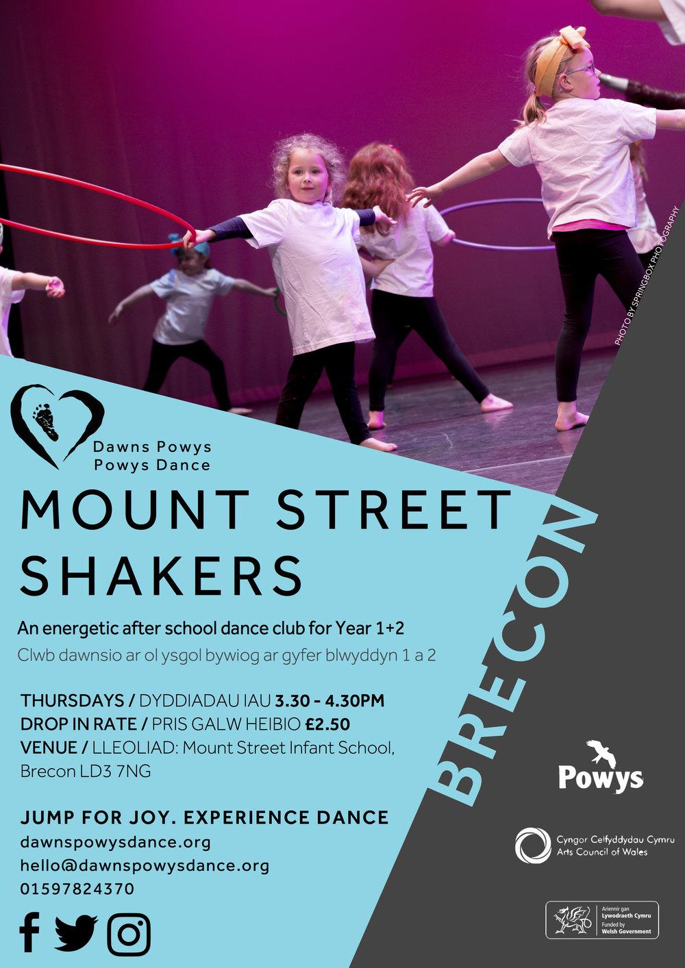 Mount Street Shakers 2019 (1).jpg