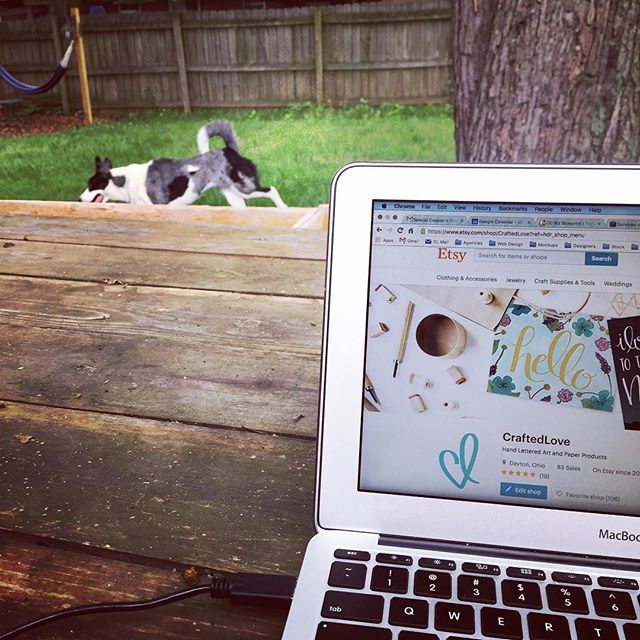 In honor of National Dog Day, I worked outside for most of the day today so the pups could run around and enjoy the nice weather. Alright, aright, it was equally awesome for me as well. Gotta soak up this summer weather while we still can here in Ohio!
