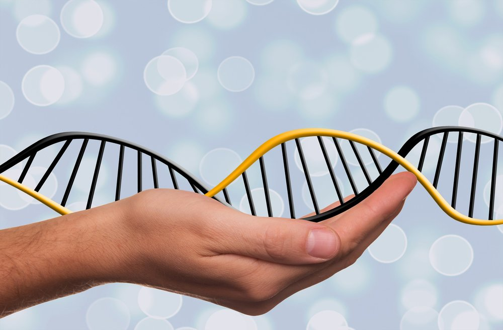 Could DNA-based diets reveal the ideal diet for you