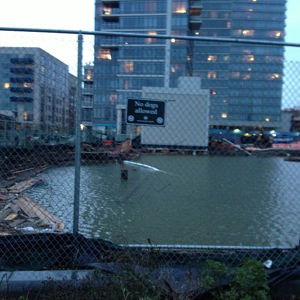 Well there didn't used to be a pool here (at North 5th St Pier)