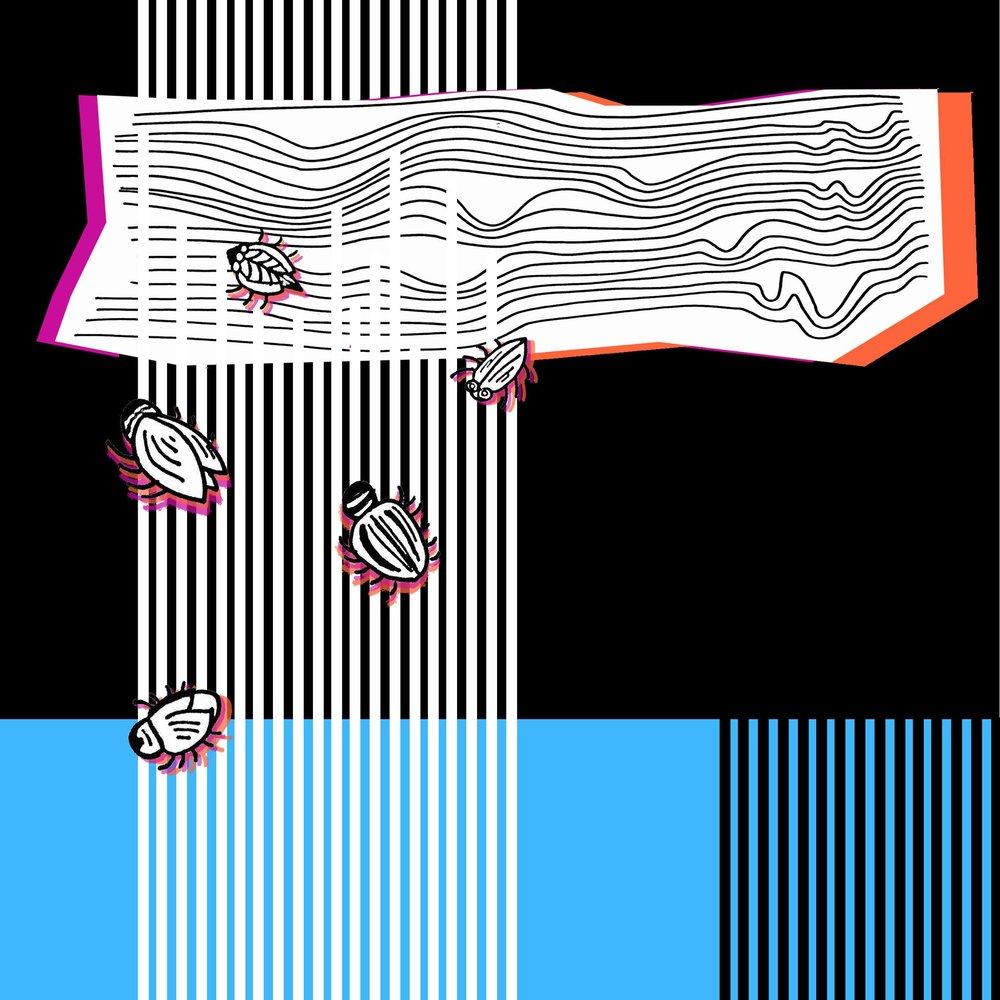 Illustration by Dora O'Neill and Karina Blodnieks