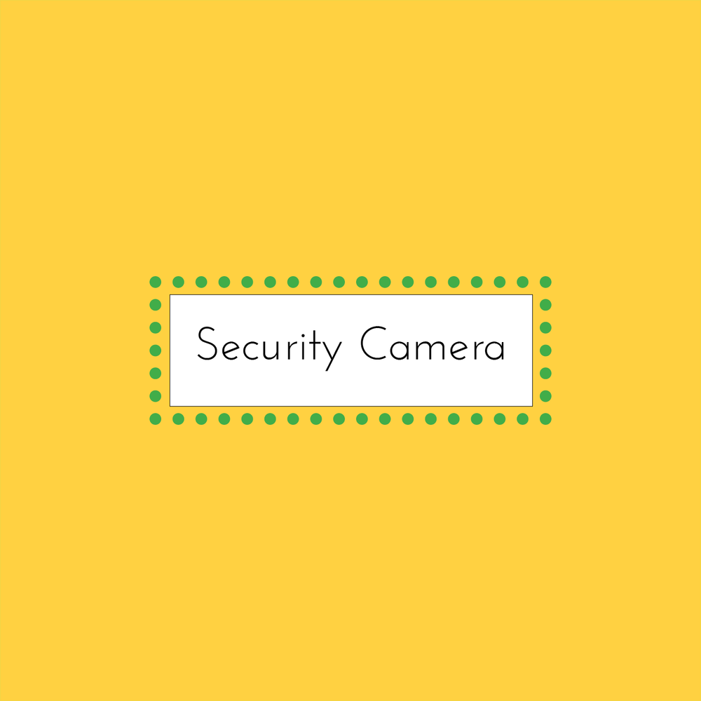Security Camera by Patrick Ronan