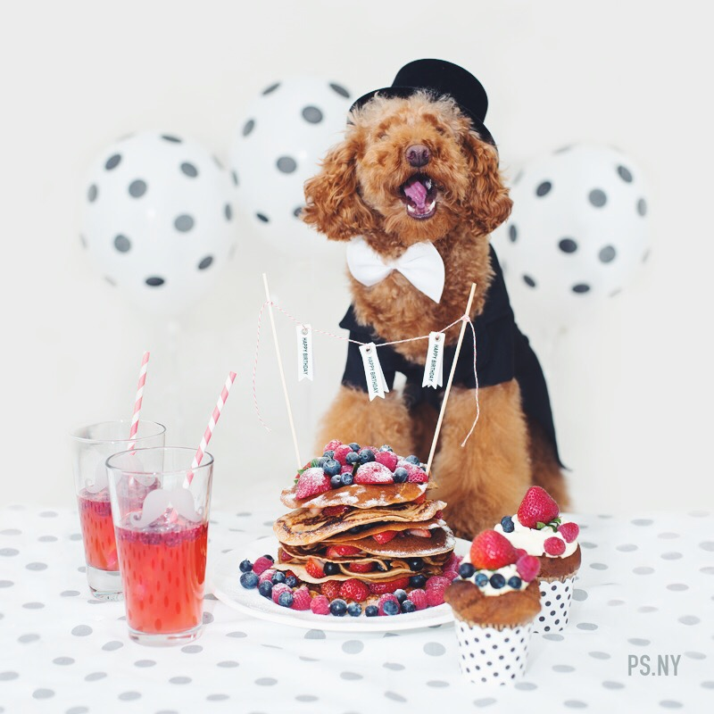 psny-cookies-2nd-birthday-2013_01.jpg