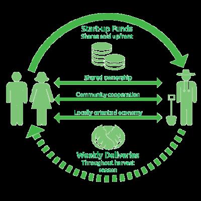 CSA-Diagram.png