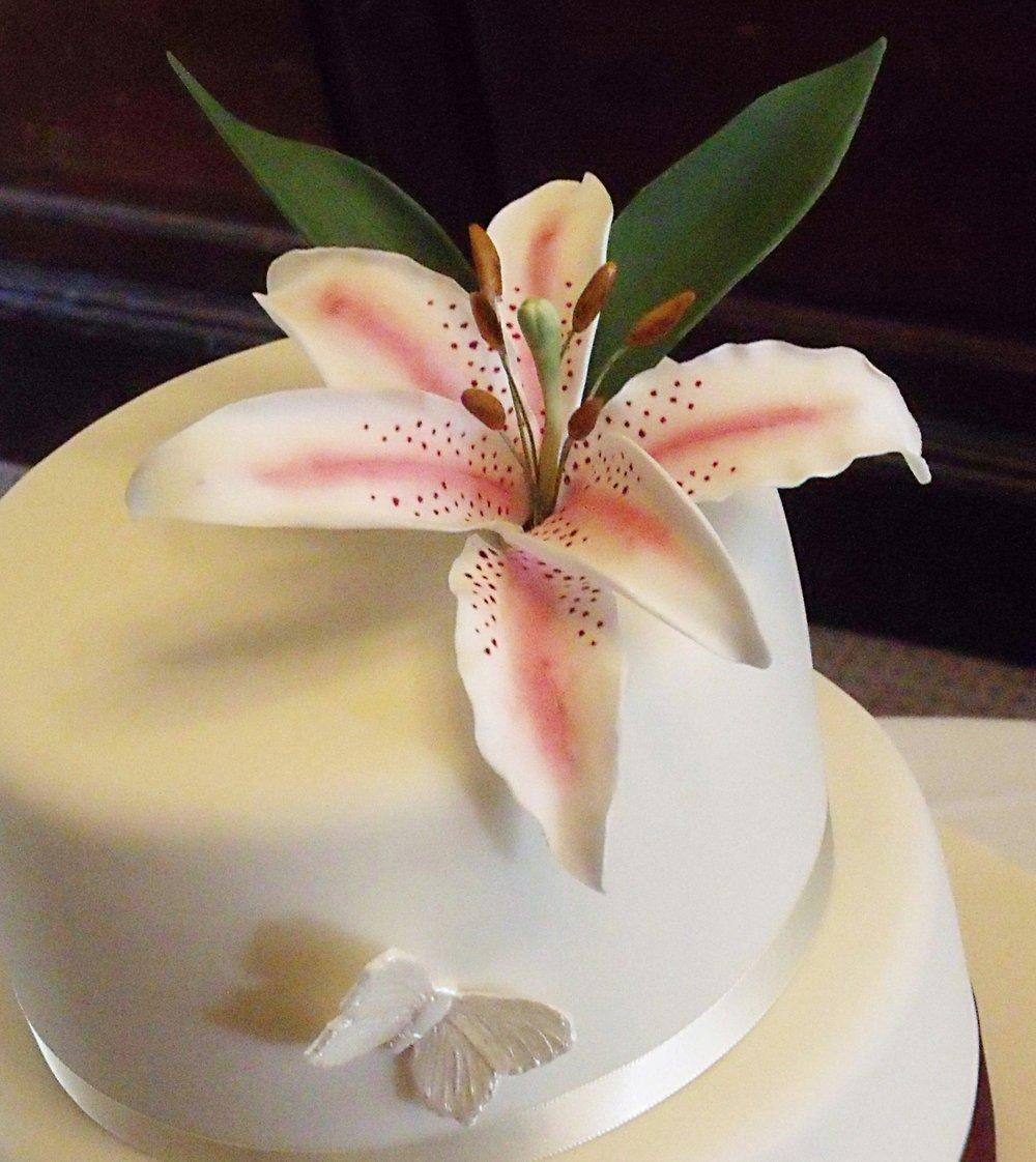 Sugar Stargazer Lily