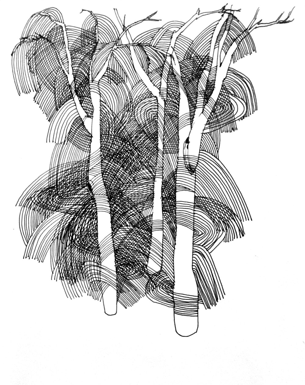 """""""Tree Number Three"""", pen & Ink on paper, 2018"""