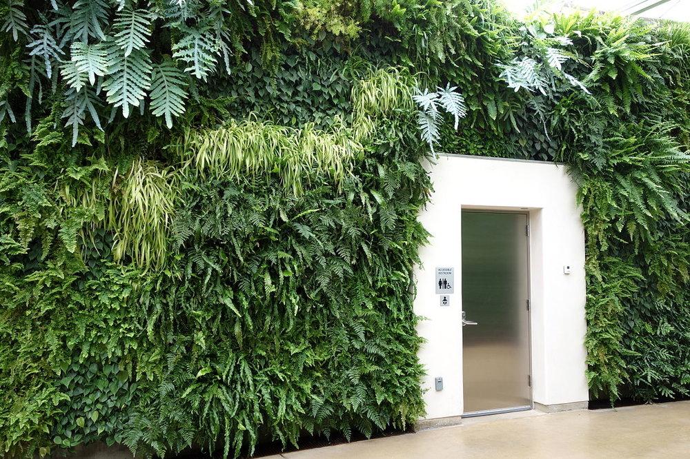 1280px-Green_wall_-_Longwood_Gardens_-_DSC01045.JPG