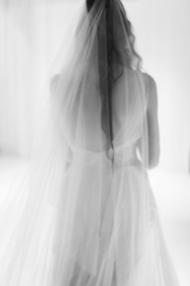 Carol Hannah 2015 Runway show - Pyrite and Nude veil