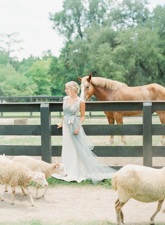 Carol Hannah Bridal Downton Gown TSOS-joyce-ko-jodimillerphoto_037.JPG